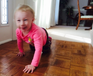 A blur of energy...even on her hands-and-knees...